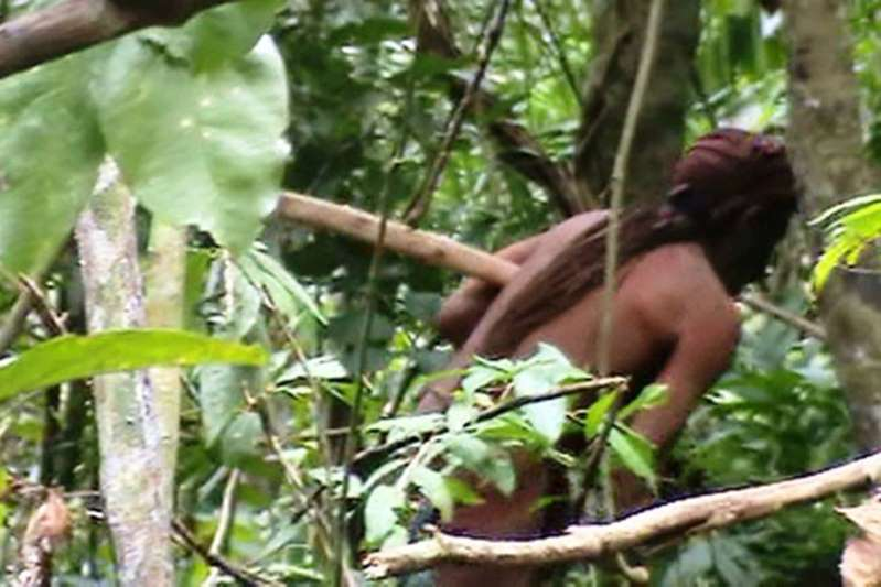 'Tarzan' brasileiro é monitorado há 22 anos na Amazônia pela Funai
