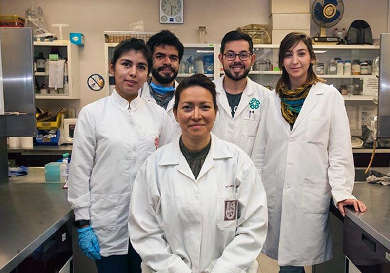 Cientista mata vírus do HPV em mulheres com nova terapia