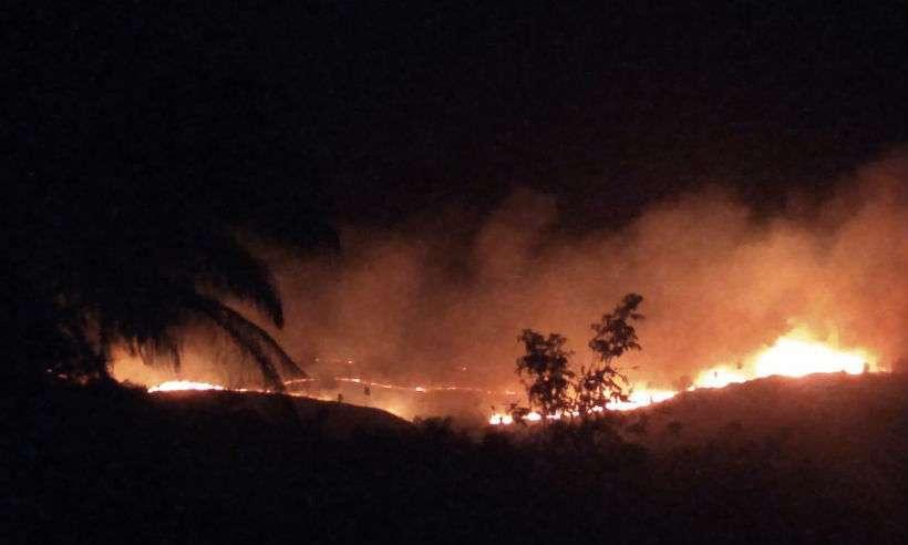 Incêndio de grandes proporções ameaça animais e destrói a vegetação em Minas